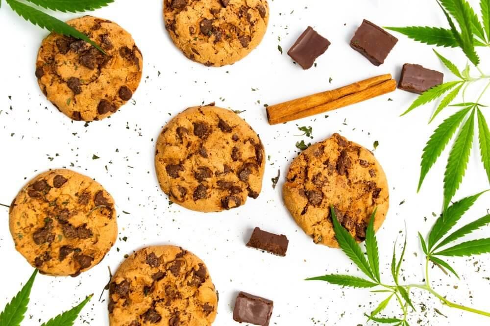 chocolate cookies with medical marijuana
